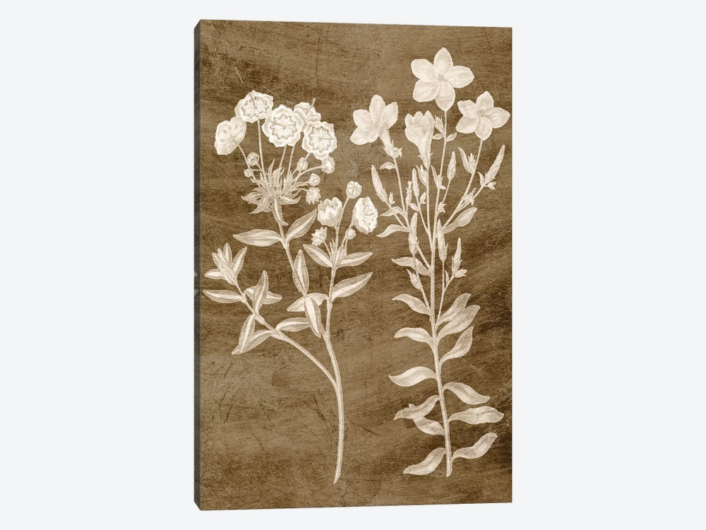 Botanical in Taupe I by Vision Studio 1-piece Canvas Artwork