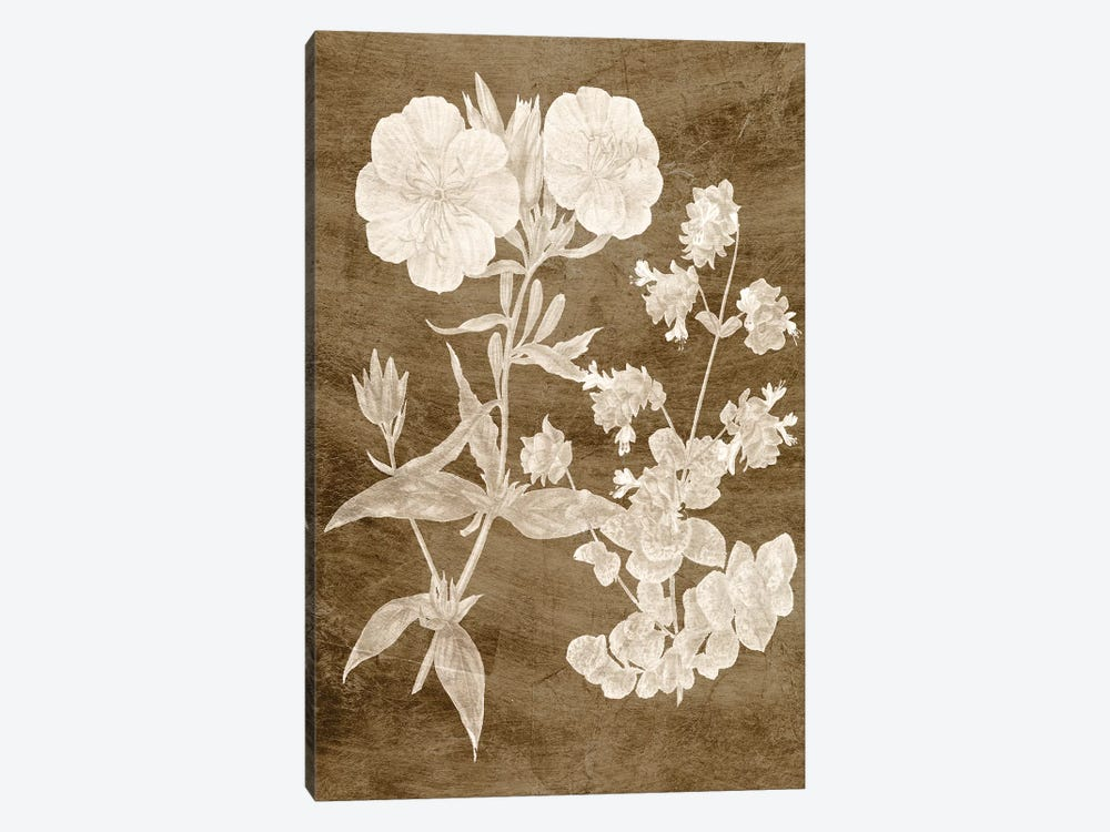 Botanical in Taupe II by Vision Studio 1-piece Canvas Art Print