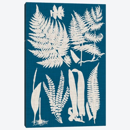 Linen & Blue Ferns I 3-Piece Canvas #VSN485} by Vision Studio Canvas Print