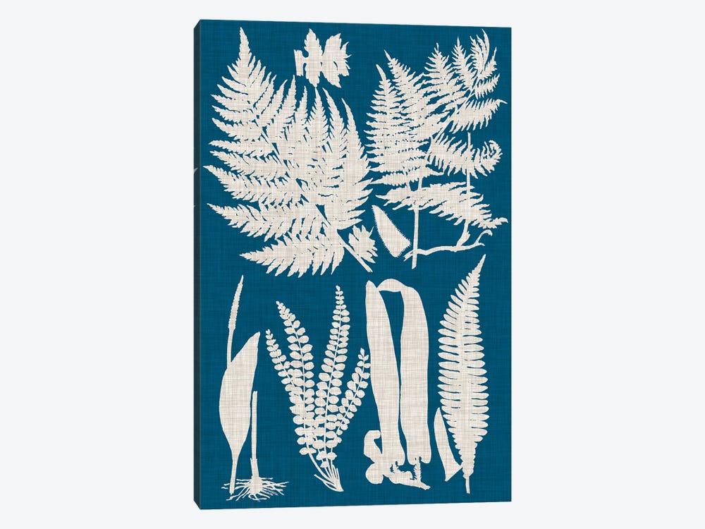 Linen & Blue Ferns I by Vision Studio 1-piece Canvas Print