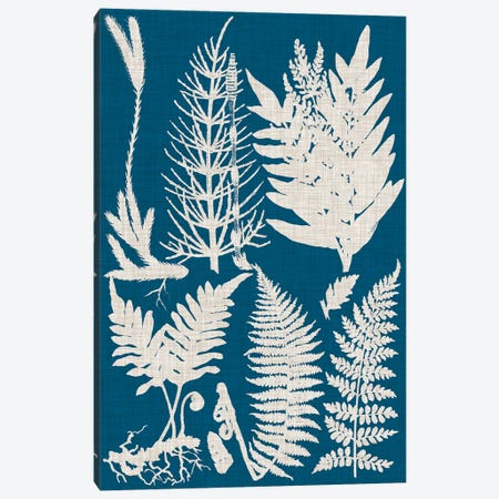 Linen & Blue Ferns II Canvas Print #VSN486} by Vision Studio Art Print