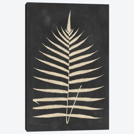 Linen Fern III 3-Piece Canvas #VSN489} by Vision Studio Canvas Wall Art
