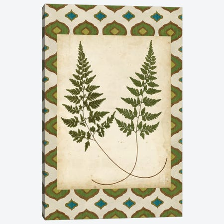 Moroccan Ferns I Canvas Print #VSN523} by Vision Studio Canvas Art Print