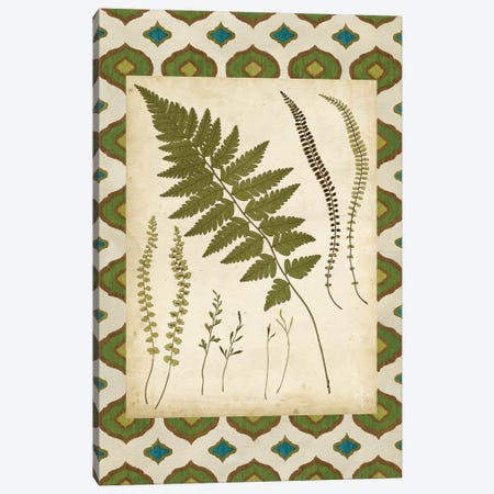 Moroccan Ferns II Canvas Print #VSN524} by Vision Studio Canvas Art