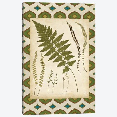 Moroccan Ferns II Canvas Print #VSN524} by Vision Studio Canvas Art