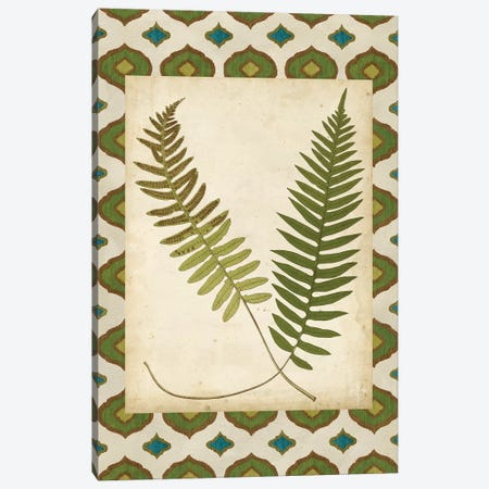 Moroccan Ferns III Canvas Print #VSN525} by Vision Studio Canvas Wall Art