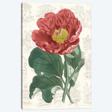 Peony Flower Garden I Canvas Print #VSN527} by Vision Studio Canvas Art