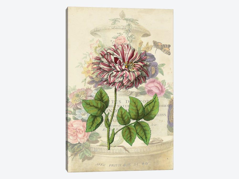 Vintage Rose Bookplate by Vision Studio 1-piece Canvas Art