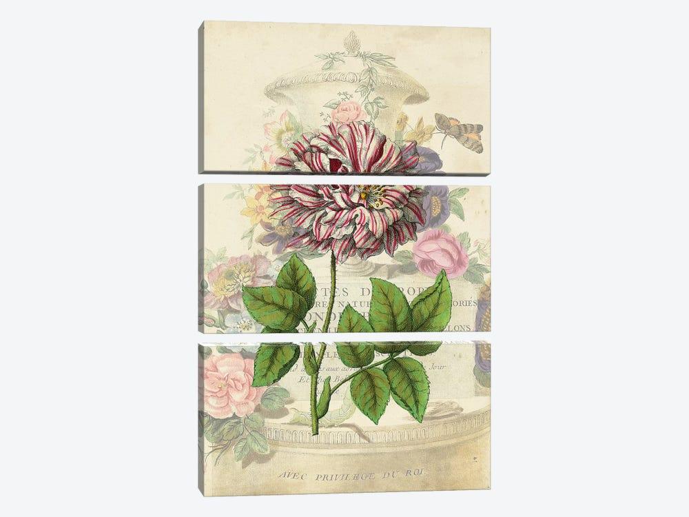 Vintage Rose Bookplate by Vision Studio 3-piece Canvas Artwork