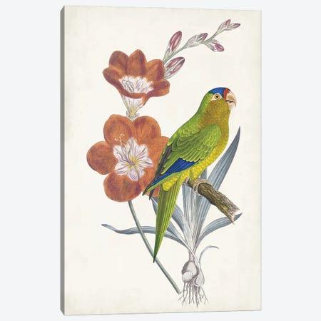 Tropical Bird & Flower III Canvas Print #VSN682} by Vision Studio Canvas Artwork