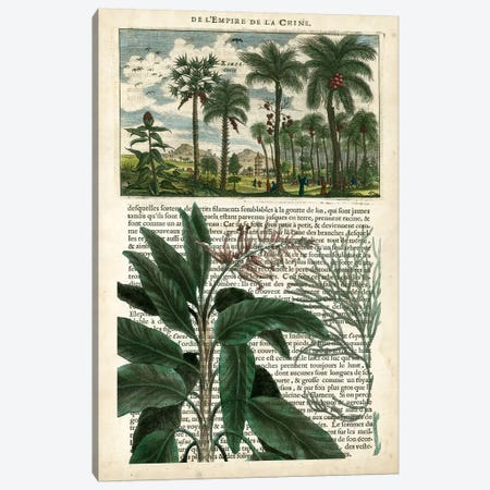Journal Of The Tropics I Canvas Print #VSN78} by Vision Studio Canvas Print