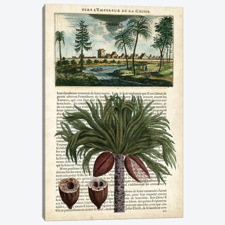 Journal Of The Tropics IV Canvas Print #VSN81} by Vision Studio Canvas Wall Art