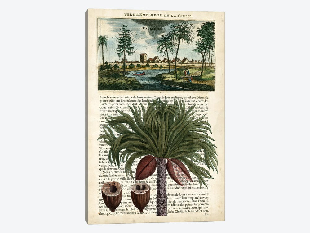 Journal Of The Tropics IV by Vision Studio 1-piece Canvas Print