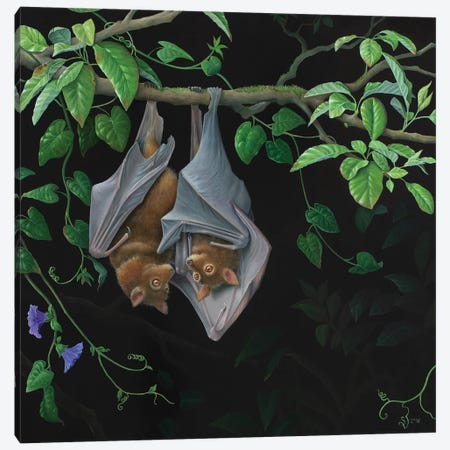 Hanging Around Canvas Print #VSS32} by Suzan Visser Canvas Wall Art