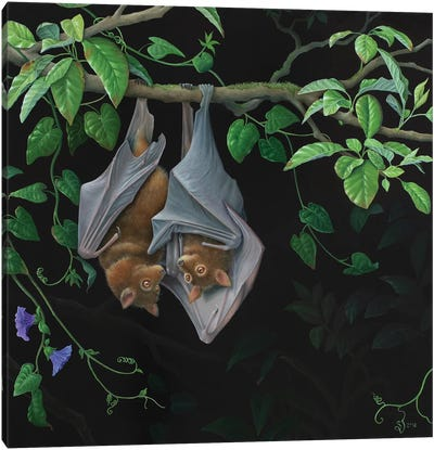 Hanging Around Canvas Art Print