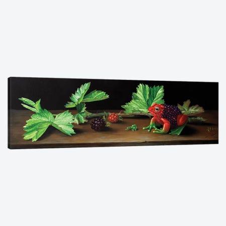 Blackberry Frog Canvas Print #VSS8} by Suzan Visser Canvas Print
