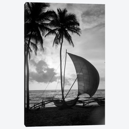 1930s Single Catamaran On Tropical Beach At Sunset Palm Trees Sri Lanka 3-Piece Canvas #VTG129} by Vintage Images Canvas Art Print