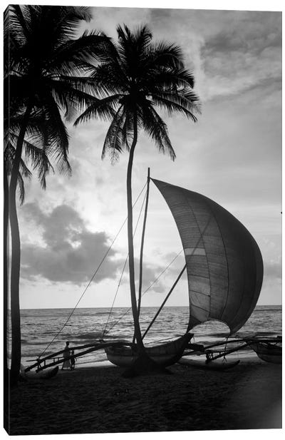 1930s Single Catamaran On Tropical Beach At Sunset Palm Trees Sri Lanka Canvas Art Print