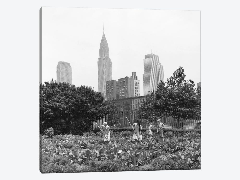 1940s-1943 Children Working In Victory Gardens In St. Gabriel's Park New York City Chrysler Building Visible In Background by Vintage Images 1-piece Canvas Wall Art