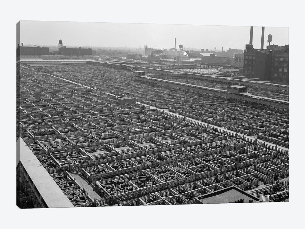 1950s Aerial View Of Cattle Pens At The Union Stock Yard & Transit Company Chicago Il USA by Vintage Images 1-piece Canvas Artwork