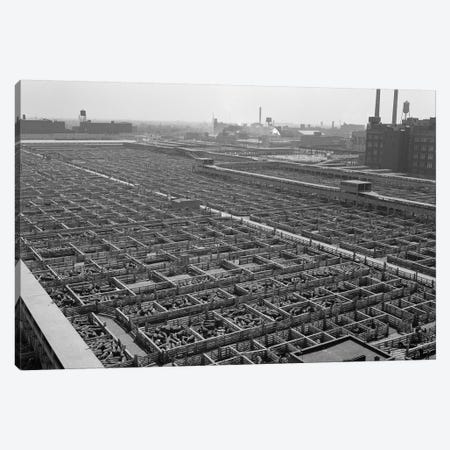 1950s Aerial View Of Cattle Pens At The Union Stock Yard & Transit Company Chicago Il USA Canvas Print #VTG267} by Vintage Images Canvas Art Print