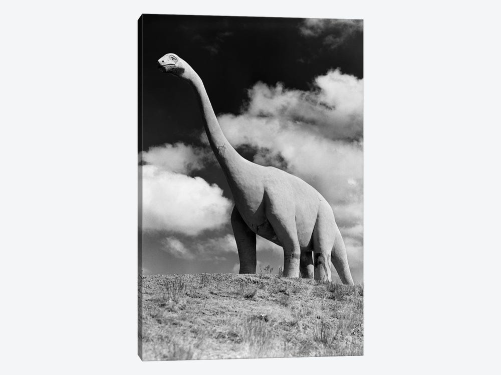 1950s Life-Size Statue Of Extinct Long Neck Gigantic Brontosaurus Dinosaur Park Established 1936 Rapid City South Dakota USA by Vintage Images 1-piece Canvas Wall Art