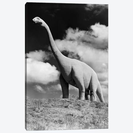 1950s Life-Size Statue Of Extinct Long Neck Gigantic Brontosaurus Dinosaur Park Established 1936 Rapid City South Dakota USA Canvas Print #VTG302} by Vintage Images Canvas Print