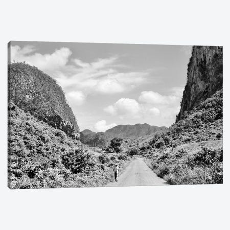 1950s Rural Road Outside Of Town Of Vinales In Pinar del Rio Province Cuba Canvas Print #VTG338} by Vintage Images Canvas Art