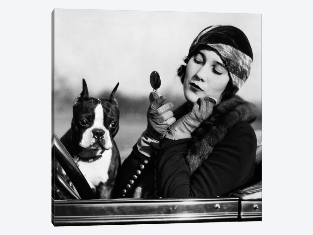 1920s Flapper In Convertible Powdering Her Cheek In Mirror With Boston Bulldog In Her Lap by Vintage Images 1-piece Canvas Print