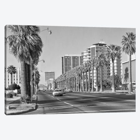 1960s Rows Of Palm Trees Central Avenue Phoenix AZ USA Canvas Print #VTG456} by Vintage Images Canvas Artwork