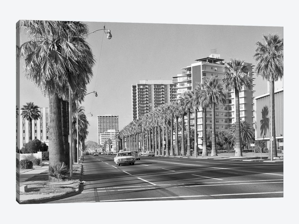 1960s Rows Of Palm Trees Central Avenue Phoenix AZ USA by Vintage Images 1-piece Canvas Wall Art