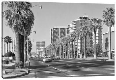 1960s Rows Of Palm Trees Central Avenue Phoenix AZ USA Canvas Art Print