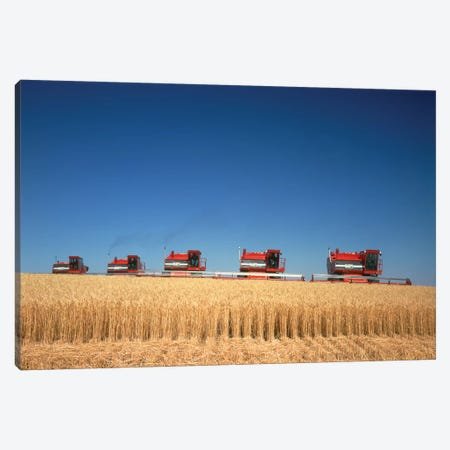 1970s Five Massey Ferguson Combines Harvesting Wheat Nebraska USA Canvas Print #VTG482} by Vintage Images Canvas Art