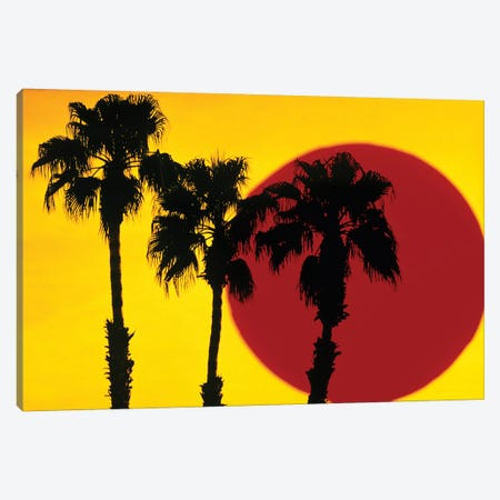 1990s 3 Silhouetted Palm Trees Against Yellow Sky With Big Red Sun Canvas Print #VTG506} by Vintage Images Canvas Wall Art