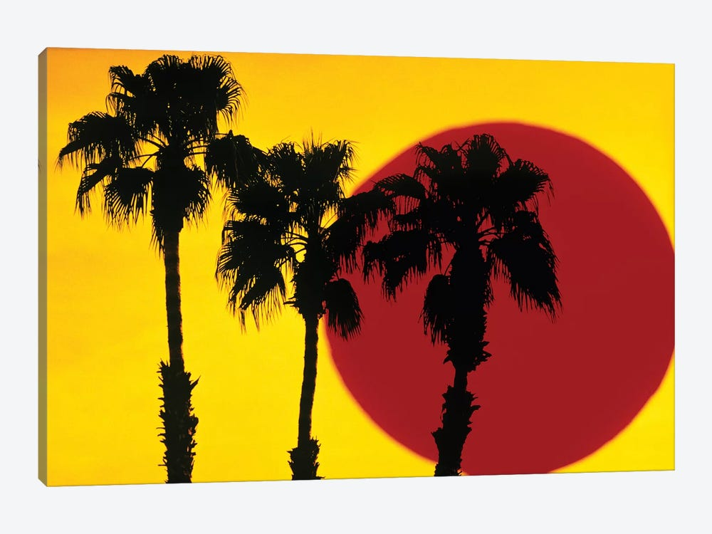 1990s 3 Silhouetted Palm Trees Against Yellow Sky With Big Red Sun by Vintage Images 1-piece Canvas Wall Art
