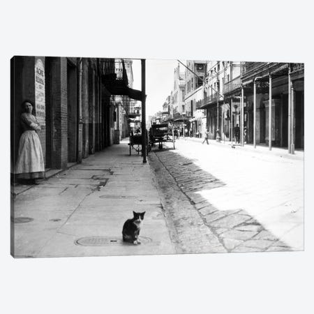 Early 1900s Cat Sitting On Street Older Section Of New Orleans Louisiana USA Canvas Print #VTG522} by Vintage Images Art Print