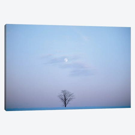 Single Tree In Winter Landscape Evening Moon Canvas Print #VTG533} by Vintage Images Canvas Wall Art