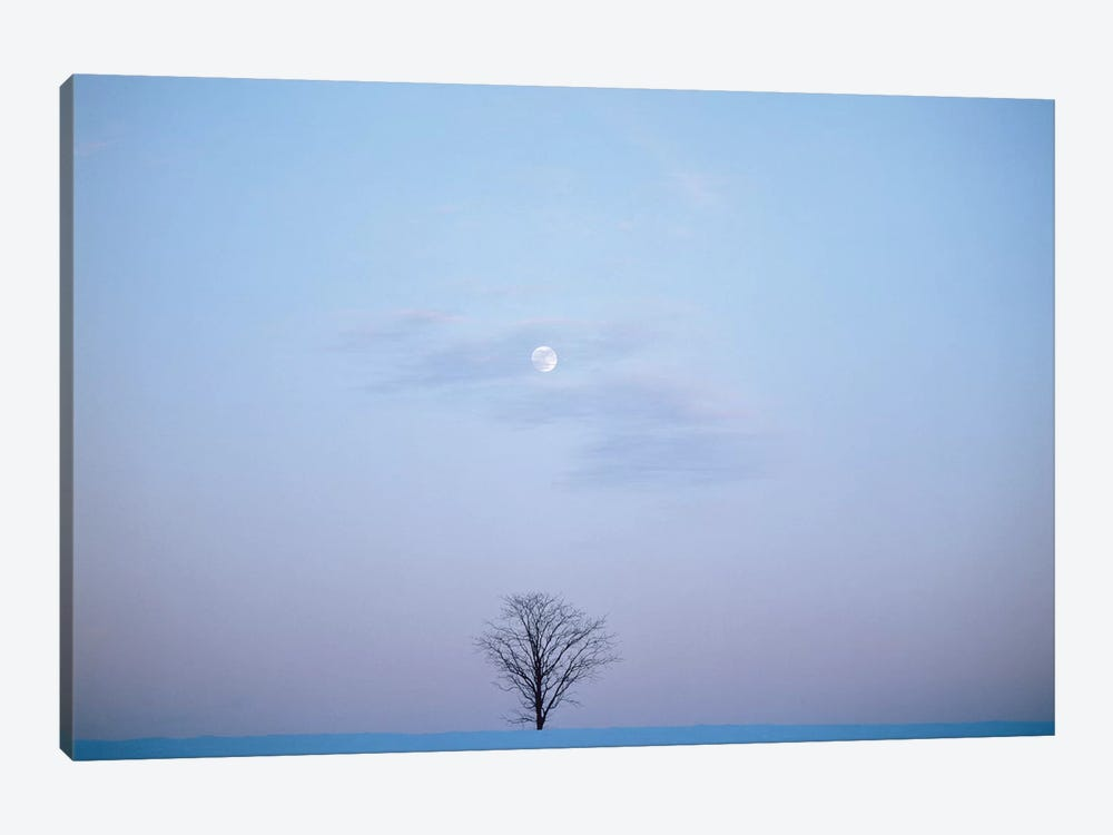 Single Tree In Winter Landscape Evening Moon by Vintage Images 1-piece Canvas Artwork