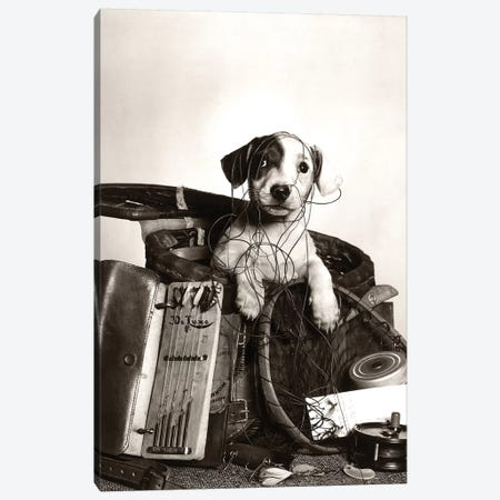 1950s Dog Popping Out Of Basket Tangled In Fishing Equipment Canvas Print #VTG560} by Vintage Images Canvas Art Print