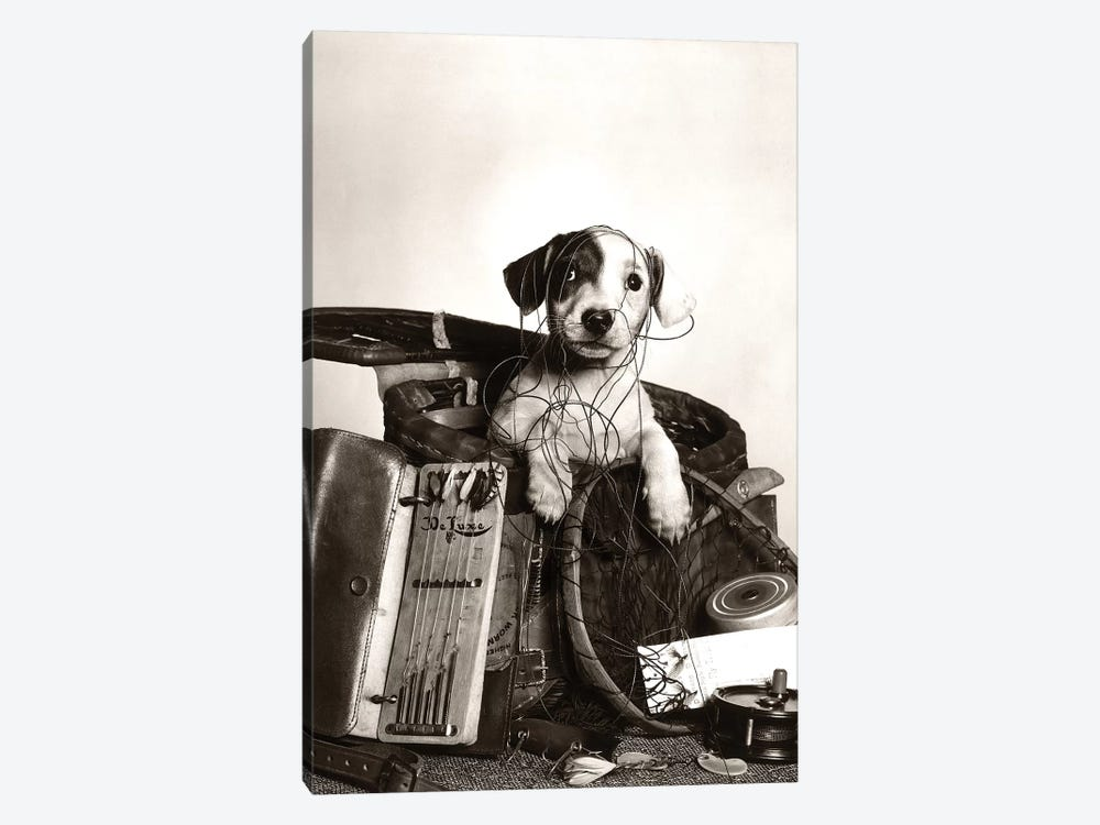 1950s Dog Popping Out Of Basket Tangled In Fishing Equipment by Vintage Images 1-piece Canvas Art