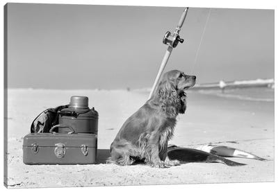 Cocker Spaniel Dog Standing Guard Over Two Caught Fish And Fishing Equipment Canvas Art Print