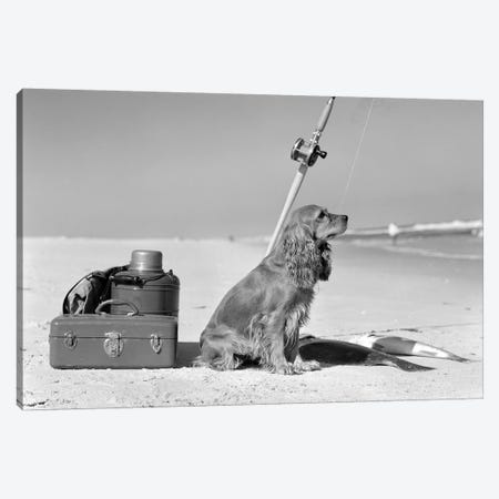 Cocker Spaniel Dog Standing Guard Over Two Caught Fish And Fishing Equipment 3-Piece Canvas #VTG621} by Vintage Images Canvas Wall Art