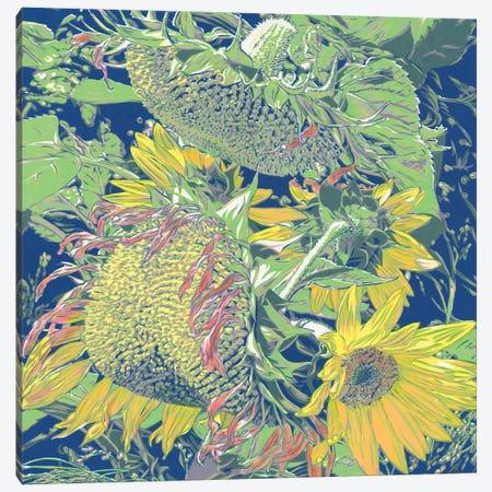 Sunflowers In The Field Canvas Print #VTK114} by Vitali Komarov Art Print