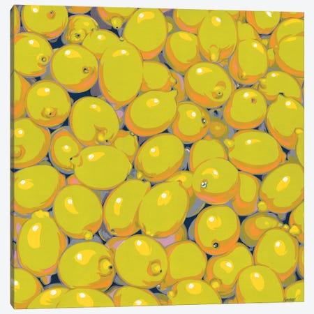 Pile Of Lemons Canvas Print #VTK115} by Vitali Komarov Canvas Print
