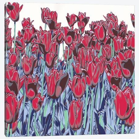 Tulips Filed Canvas Print #VTK124} by Vitali Komarov Canvas Art
