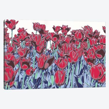 Red Tulip Field Canvas Print #VTK125} by Vitali Komarov Canvas Art