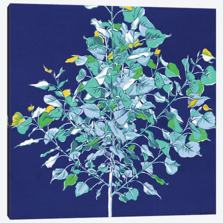 Young Tree Canvas Print #VTK126} by Vitali Komarov Canvas Art