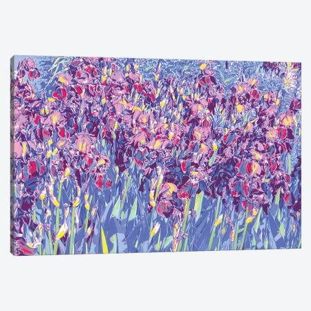 Iris Flowers In A Field Canvas Print #VTK151} by Vitali Komarov Canvas Artwork
