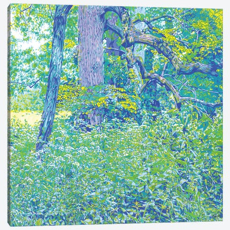 Forest Edge Canvas Print #VTK155} by Vitali Komarov Art Print