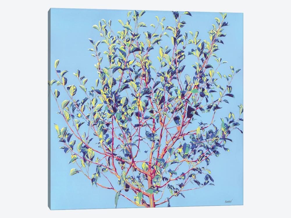 Spring Tree by Vitali Komarov 1-piece Canvas Artwork